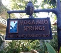 mogambo-springs-10_r