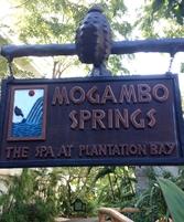 Mogambo Springs 10